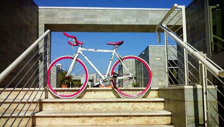 Bibi Fixed Fixed Gear Fixedgear Fixedgearforlife Fixedlife Hanging Out Taking Photos Check This Out