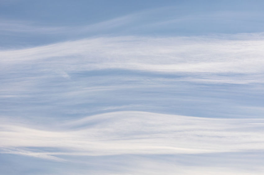 Close-up of cirrostratus clouds on a windy day Copy Space Dramatic Sky Natural Pattern Sunny Textured  Weather Abstract Awe Backgrounds Beauty In Nature Blue Cirrostratus Close-up Cloud - Sky Cloudscape Day Low Angle View Nature No People Outdoors Pattern Sky Sky Only White Color Wind