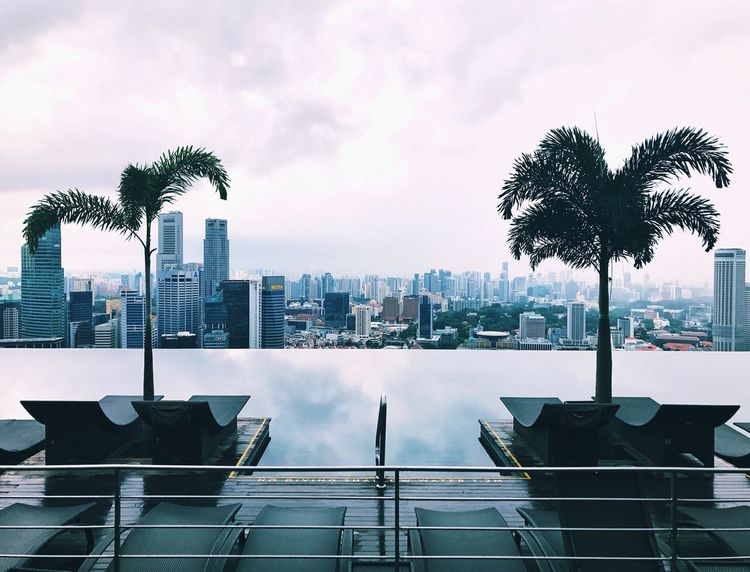 Sommergefühle Summer Pool Sky Skyscraper Cloud - Sky (null)City Architecture Tree Outdoors Infinity Pool Building Exterior Built Structure Day No People Cityscape Urban Skyline Growth Water Nature Singapore View Palm Tree Hotel First Eyeem Photo EyeEmNewHere