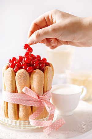 Decorating ladyfingers and berry cake on a serving plate. Wine and milk in background Arranging Berries Berry Berry Cake Cake Decorating Decoration Food Food And Drink Freshness Fruit Human Hand Ladyfingers Large Group Of Objects One Woman Only Plate Red Ribbon Serving Platter