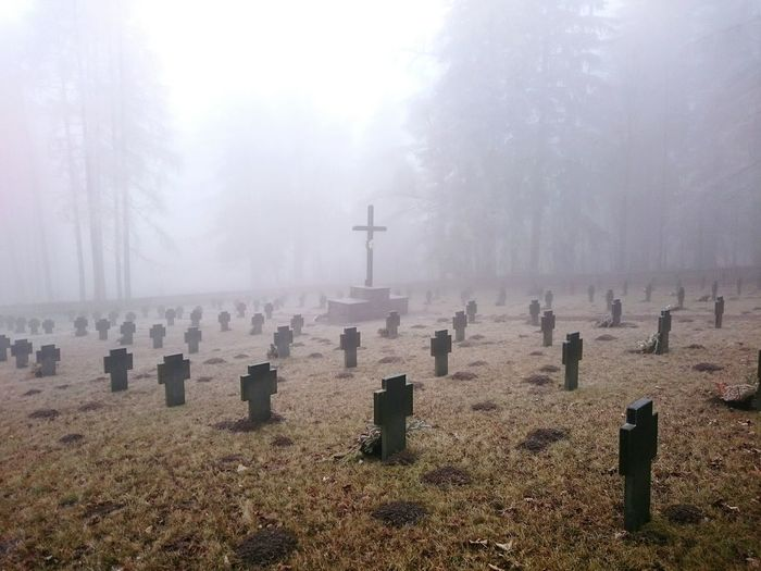 Tranquil Scene Of Cemetery During Foggy Weather