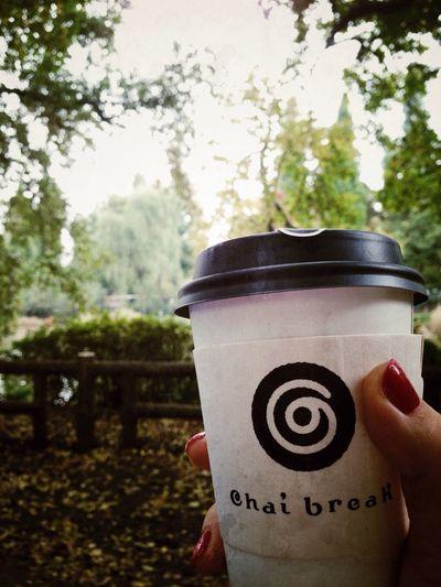 Taking Photos Relaxing Autumn In The Park  Chai Tea