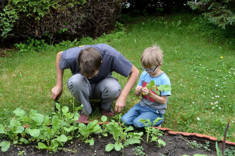 Father and son gardening at back yard