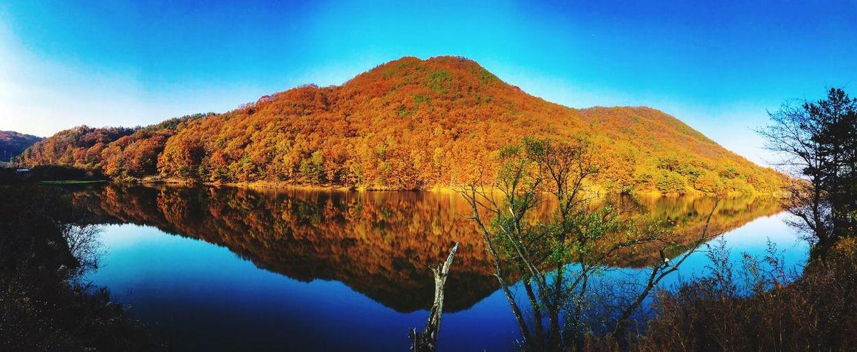 Mirroring In Water Korea Fall Water First Eyeem Photo