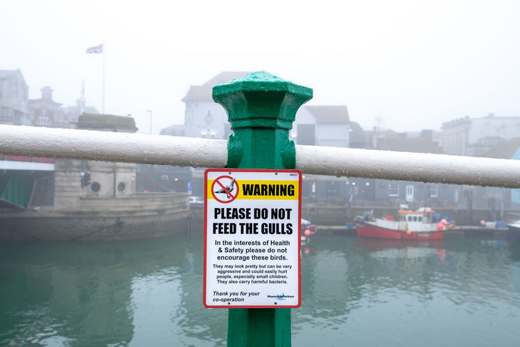 """A polite warning sign asking you """"Please do not feed the gulls"""" attached to a green hand rail post in the foggy town of Weymouth, Dorset, UK. Feeding  Seagulls Architecture Building Exterior Built Structure City Close-up Communication Day Focus On Foreground Guidance Nature No People Outdoors River Safety Sign Text Water Waterfront Western Script"""