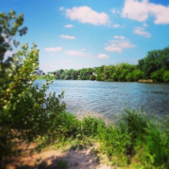 Profiter de ce que la nature nous offre. Sun Week Orléans AuMax Loire France Enjoying Life Beautiful