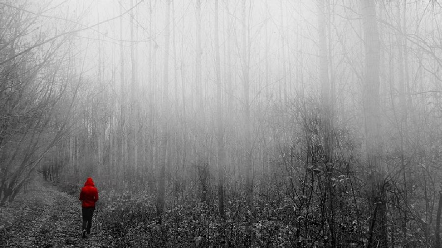 Photowithiphone6s Fog Foggy Day Foggy Forest Fog_collection Redcoat Red Coat IPhone Photography Iphonegraphy Iphonephotography IPhoneography Photooftheday Pictureoftheday Photography People Photography Picoftheday Mobilephotography Mobile Photography IPSWeather My Best Photo 2015 People And Places