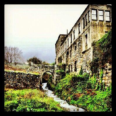 Nature Landscape Galicia Oia