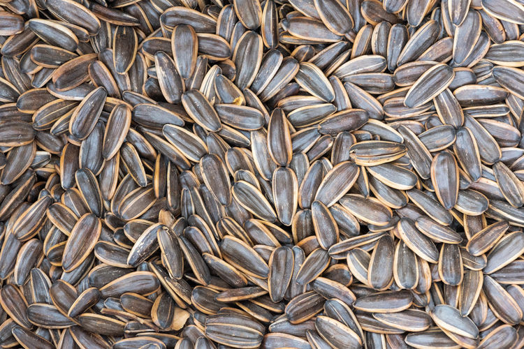 sunflower seeds Full Frame Backgrounds Large Group Of Objects Abundance Food No People Food And Drink Freshness Wellbeing Heap Healthy Eating Still Life Close-up High Angle View Agriculture Raw Food Business Finance And Industry Brown Drying Seed Sustainable Resources Sunflower Seeds Seed