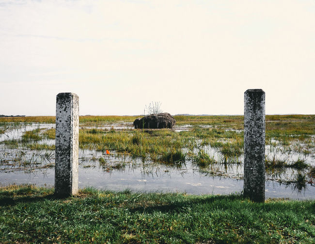 Poles by marshland against clear sky