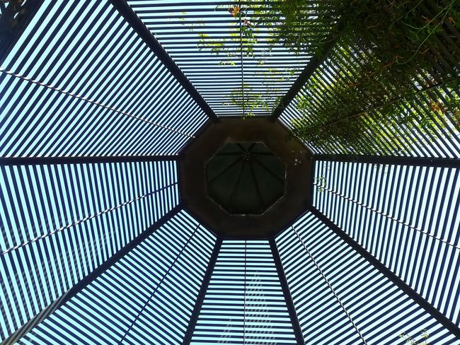 Architecture Sunlight Directly Below Metal Nature Low Angle View No People Plant Geometric Shape Built Structure