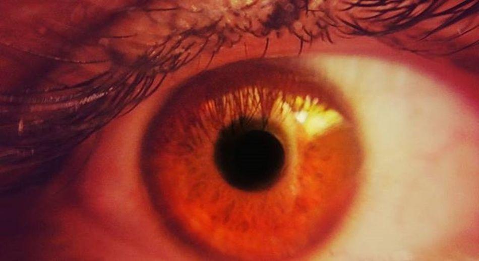Remnants Basicmacroshot Thesoul Humaneye