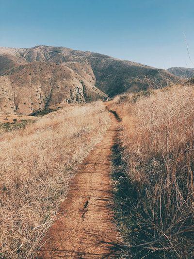 Follow the path