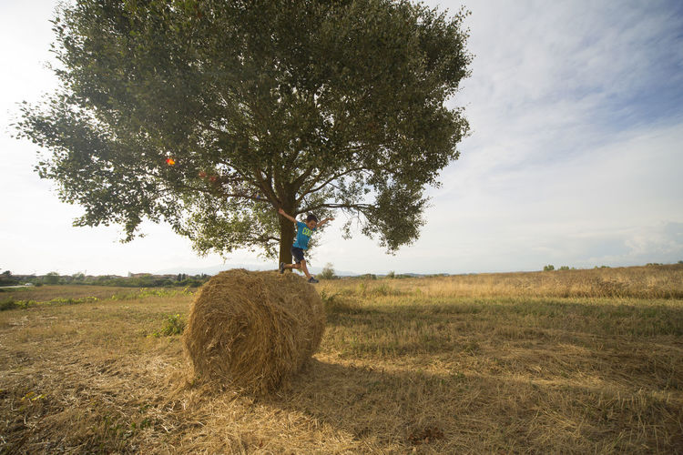 Children Tranquility Agriculture Bale  Child Day Field Land Landscape Leisure Activity Lifestyles Nature One Person Outdoors Plant Real People Sky Standing Tranquil Scene Tree