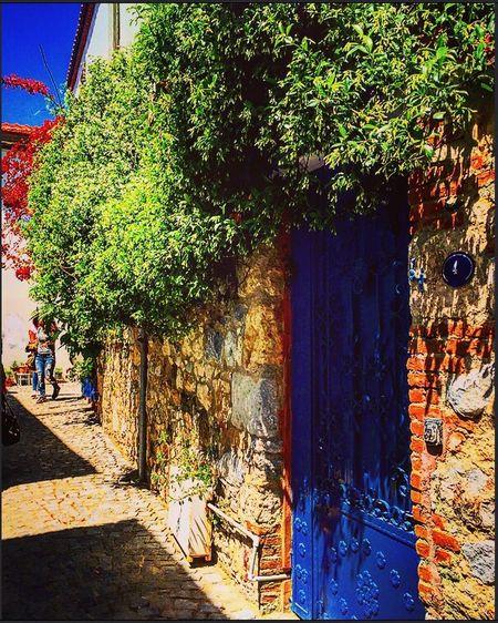 The Great Outdoors With Adobe Door Doors Door_series Kapılar Bluedoors Bluedoor