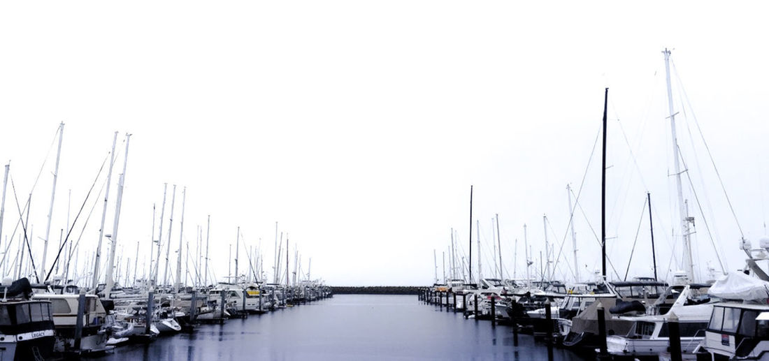 Boat Coast Harbor IPhone Iphone7 Marina Nature No People Outdoors Sailboat Sailing Sailing Ship Sea Seattle Seattle, Washington Washington Washington State Water Yacht EyeEmNewHere