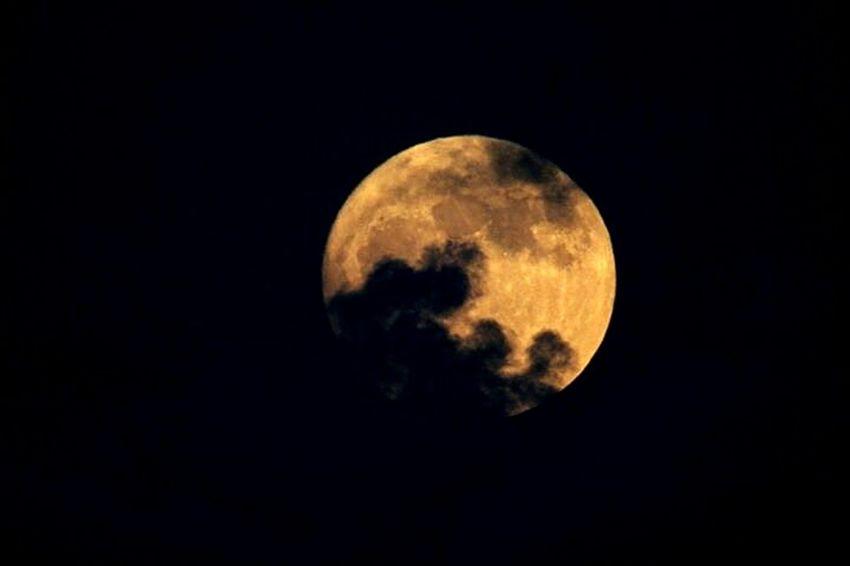Supermonde 2016 . November / Full Moon Moon Moon Surface Berlin No People Alireza Rezvani  Space Sky Nature Outdoors