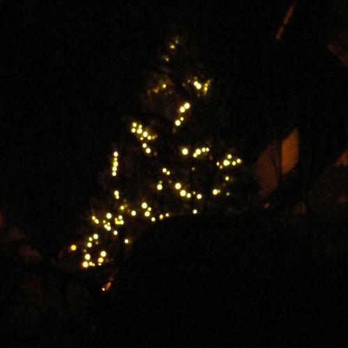 Cristmas Tree Christmas Decoration Illuminated Christmas Celebration Christmas Lights christmas tree Holiday - Event Arts Culture And Entertainment Sky