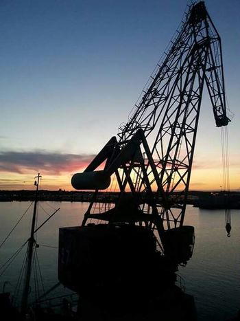 Crane Lookslike Seahorse Sunset Colours Sea Sunset The Purist (no Edit, No Filter) Beatiful Enjoing