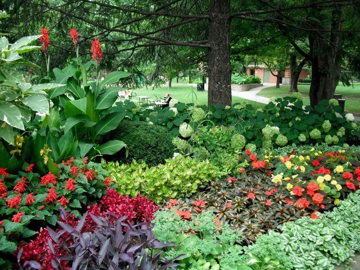 Picnicinthepark Picnictables Park Floralperfection A Look Into The Future Inbloom Redflowers Parksetting Lush Summer Views