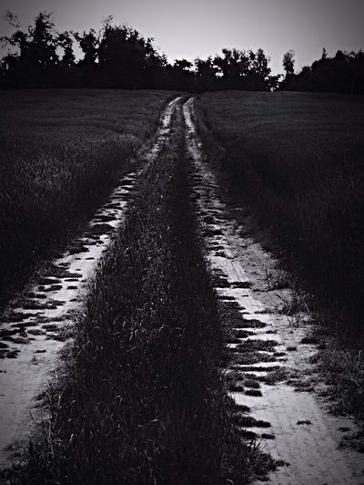 Old Dirt Road Backroads Kentucky Life Road Home Country Life Country Is All I Will Ever Be