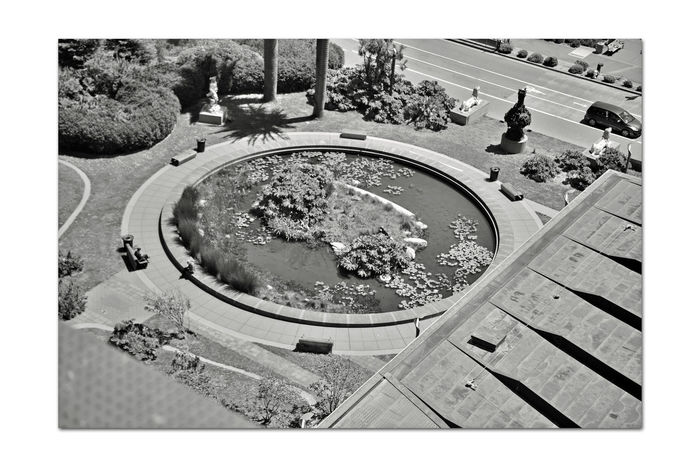 DeYoung Museum _ Observation Tower 11 San Francisco CA🇺🇸 Golden Gate Park 144 Ft. DeYoung Museum 8th Floor Observation Tower Bnw_friday_eyeemchallenge Fine Arts Museum View From DeYoung Pool Of Enchantment Roof Garden Courtyard  Historic Statues Benches Monochrome_Photography Monochrome Black & White Black & White Photography Black And White Black And White Collection