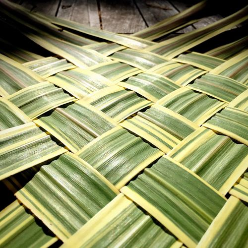 Close-up Full Frame Backgrounds Selective Focus Repetition Extreme Close-up Abundance No People Focus On Foreground Vibrant Color Surface Level Green Cordyline Cordyline Torbay Dazzler Cabbage Tree Woven Leaves Woven Leaves Basket Weave