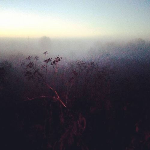 October mist. Arad, Romania, 2015. Photo by Ciprian Hord/@ciprianhord for @everydayeasterneurope Everydayeverywhere Romania Ciprianhord Mist Sunrise Hikaricreative Outofthephone LCStories