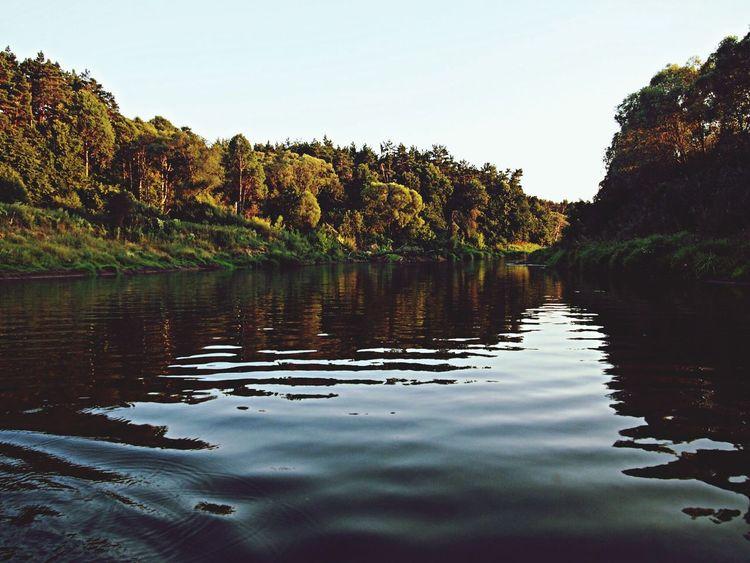 Nature EyeEm Nature Lover TreesAndWater River