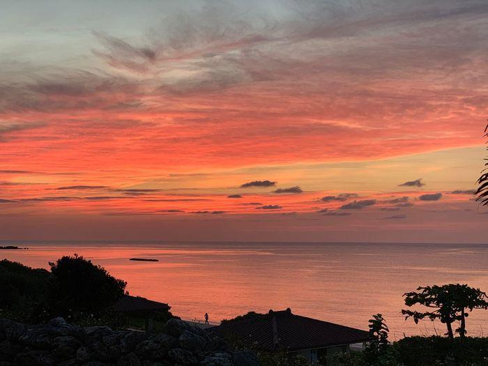 tomorrow will come #sunsetred#sun #sea#water#okinawa#japan Sunset Sky Cloud - Sky Beauty In Nature Scenics - Nature Orange Color Tree