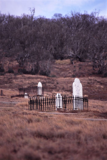 Low angle view of tombstones amidst fence on mountain