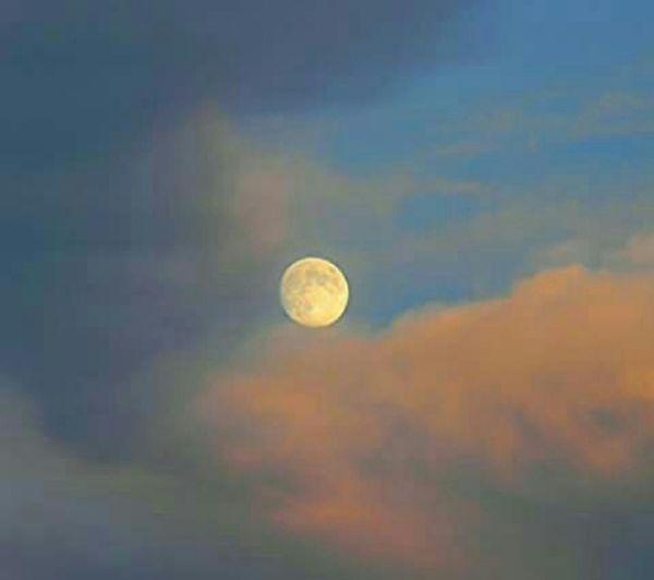 Scenics Moon