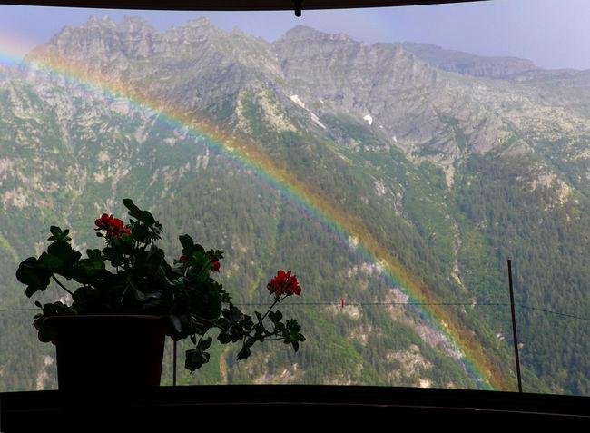 Piemonte Silhouette Beauty In Nature Flowering Plant Hikingadventures Idyllic Italian Alps Italy Mountain Mountain Range Out Of The Window Rainbow Scenics - Nature Simplicity Through The Window