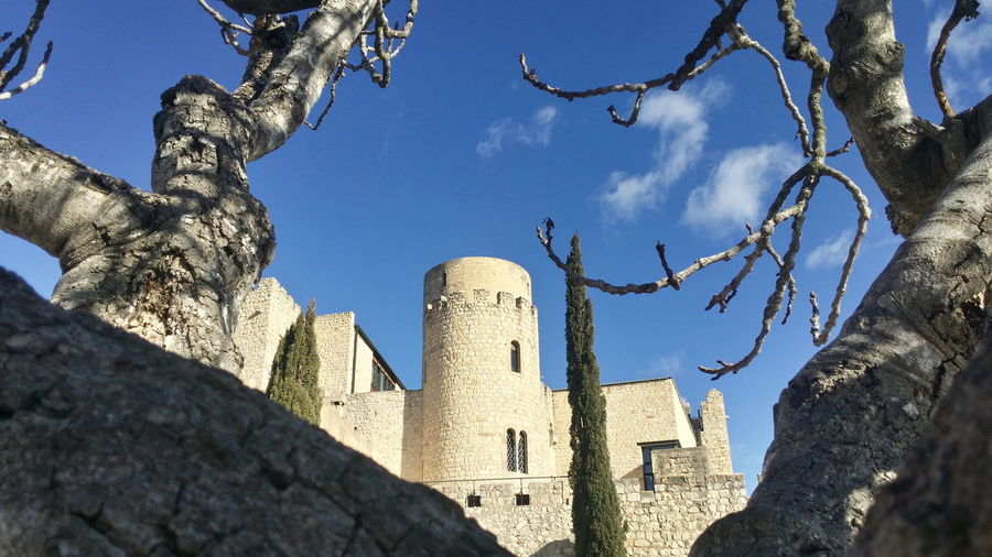 Castellet. Castle View  Castillo Medieval Castellet History Day Outdoors Low Angle View No People Sky Tree