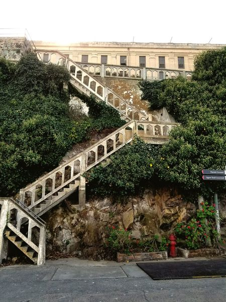 Built Structure Architecture Outdoors Day Tree Building Exterior No People City Nature Sky Textures And Surfaces Steps And Stairs Decorative Structure Pattern Landscape_Collection Travel Cityscape The Architect - 2018 EyeEm Awards