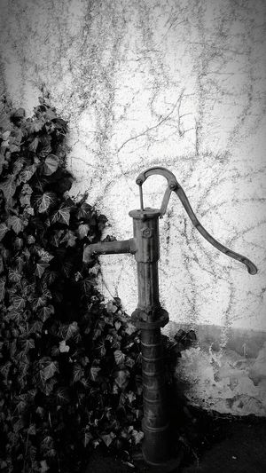Oldtimer Waterpump Black & White Taking Photos Forgotten Things