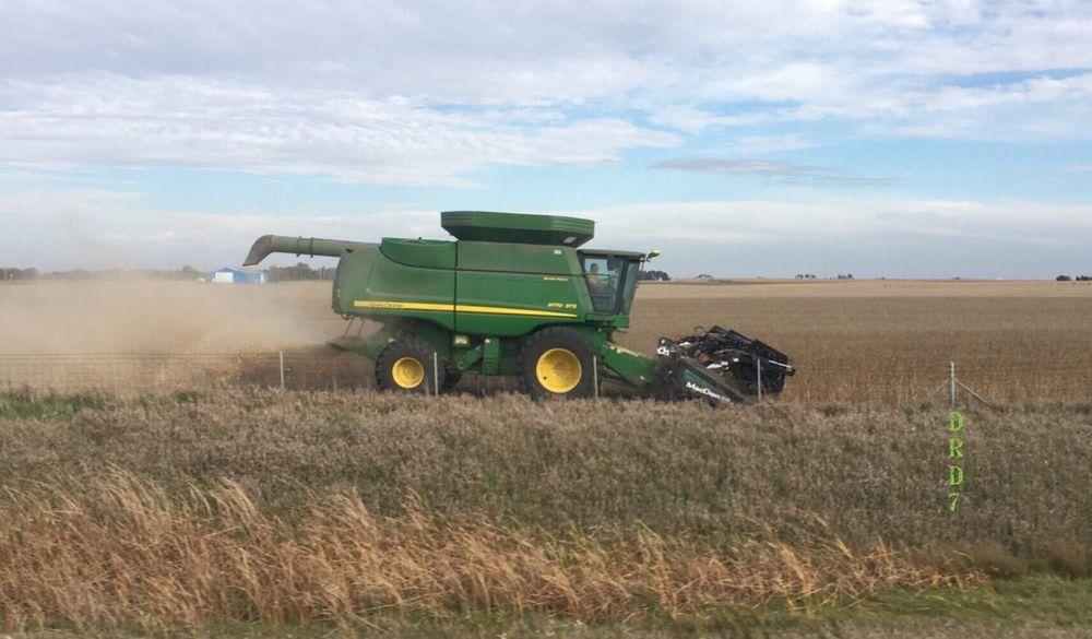 Harvest time Agriculture Field Rural Scene Sky