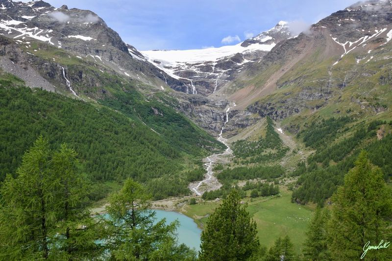 Switzerland Beauty In Nature Scenics - Nature Plant Mountain Tree Green Color Tranquil Scene Tranquility Nature Environment Growth No People Non-urban Scene Mountain Range Outdoors Land Sky