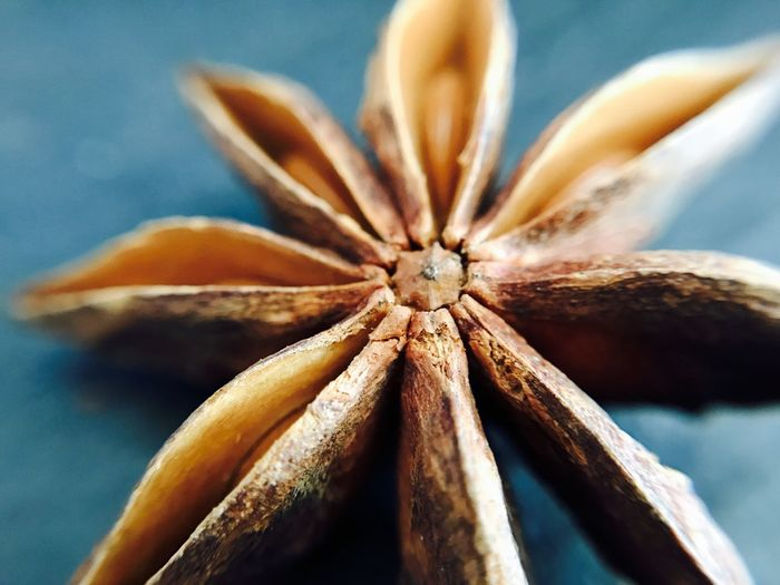 Close up of star anise on table