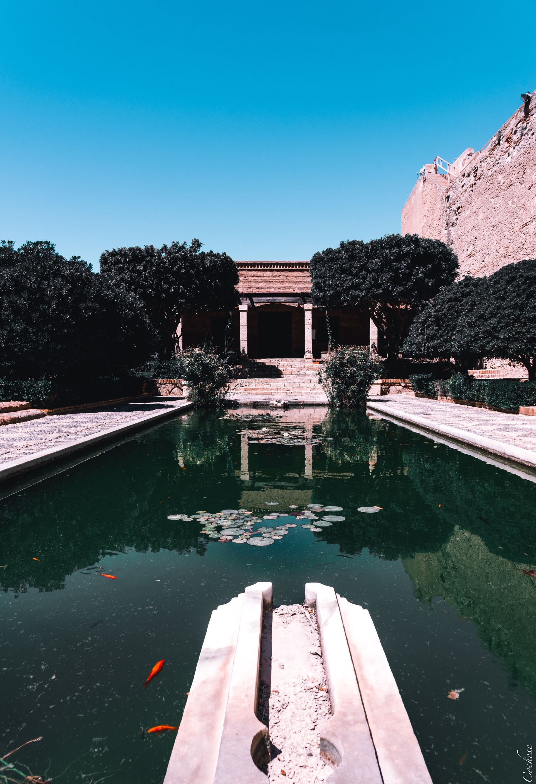 water, architecture, reflection, built structure, sky, nature, tree, lake, day, plant, clear sky, building exterior, no people, pool, travel destinations, outdoors, the past, history, swimming pool, reflecting pool