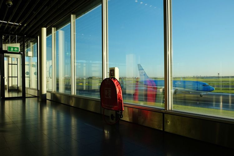 Rear view of man standing by window at airport