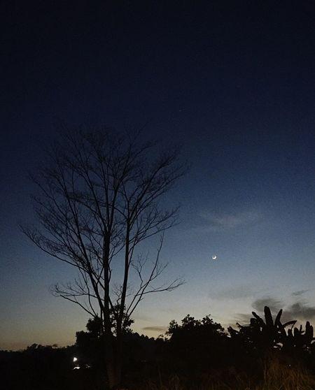 Moon Favspot KampungTaking Photos Random Kondohon PenampangNature_collection