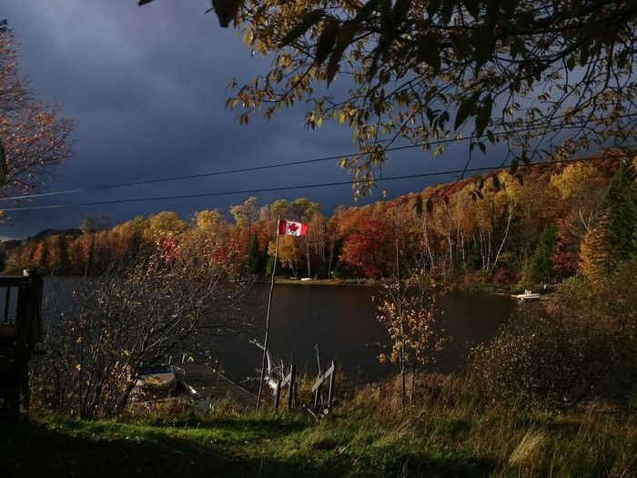 Muskoka Canada in the autumn.. Muskoka, Autumn, Leaves, Lake, Nature