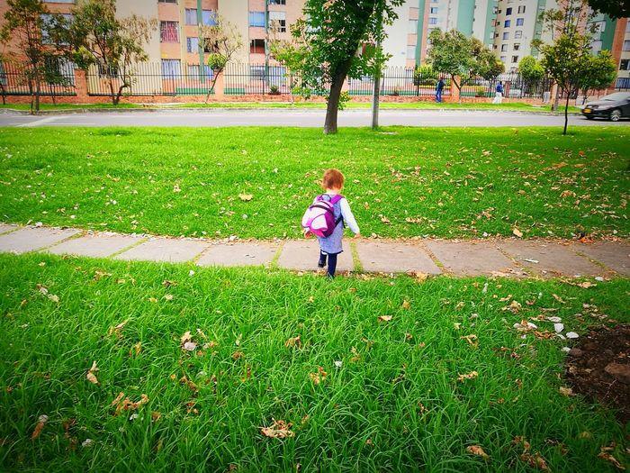 Boy standing on grass