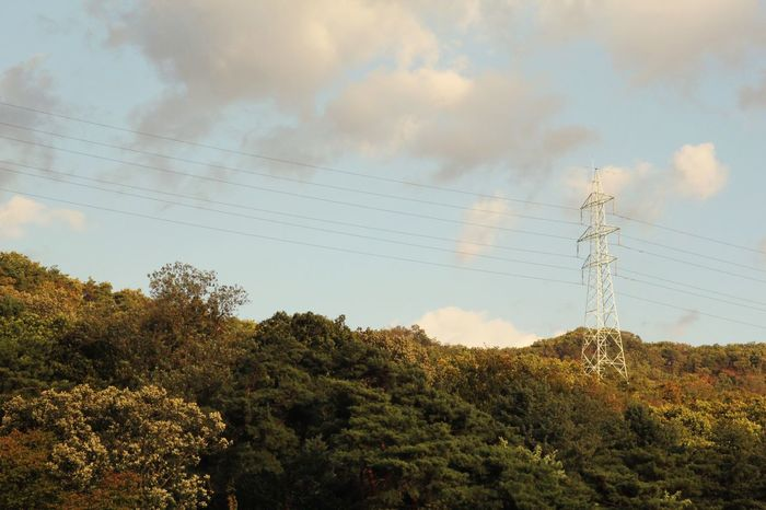 회암사지 터 Autumn Autumn Colors Tree And Sky Transmission Line Tower EyeEm Korea Korea