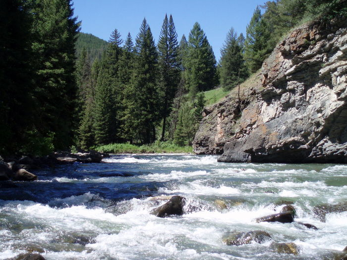 Adventure Beauty In Nature Canyon Cliff Cold Gallatin Gallatin River Geology Montana Mountain Nature Outdoors Power In Nature River Rock Rock - Object Rock Formation Rocky Mountains Scenics Swift Swift Water Tree, Sky And Water Trees And Water Water Water_collection
