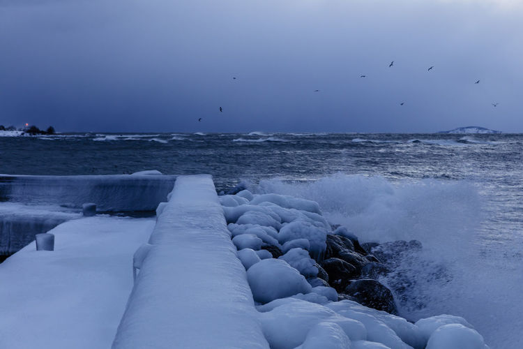 Baltic Sea Blue Eyes Ice Lighthouse Pier Sweden Winter Birds Byxelkrok Island No People Sea Sky_collection Snow Covered Water Waves And Rocks Öland