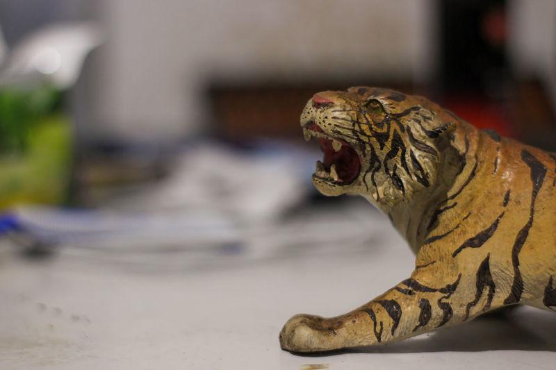 Close-up of cat sculpture