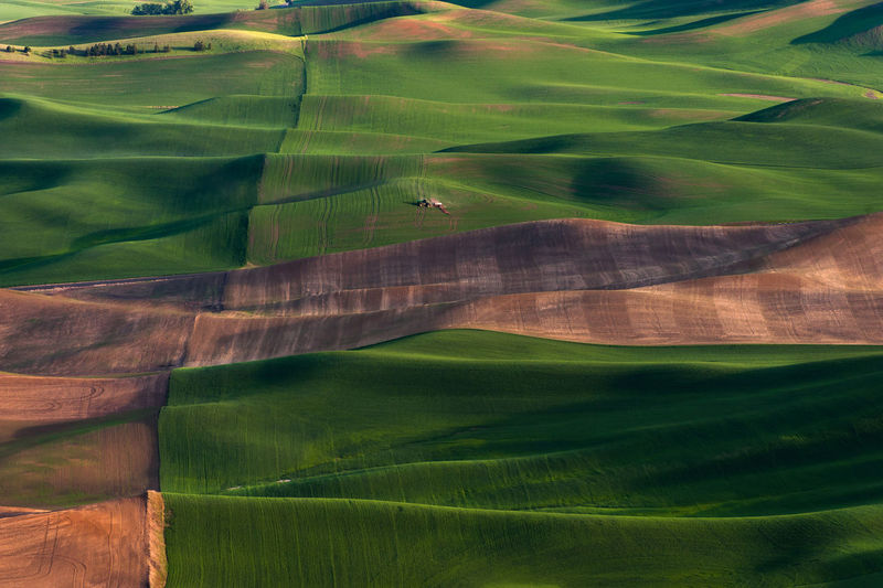 Aerial view of agricultural field at steptoe butte state park