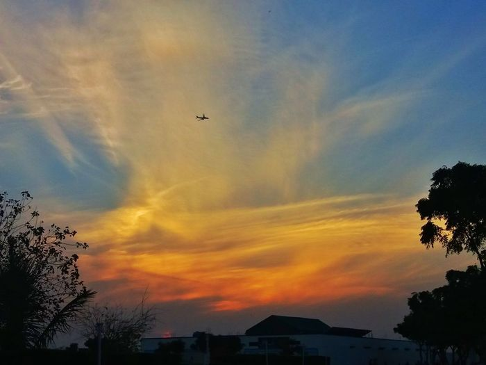 Aeroplane In The Sky Flyingover Sunset_collection Pakistaniphotographer Karachi Pakistan Eyem4phptography Sindh Karachi EyeEm Myhome BelovedSindh Bird Flying City Sunset Technology Tree Multi Colored Silhouette Mid-air Sky
